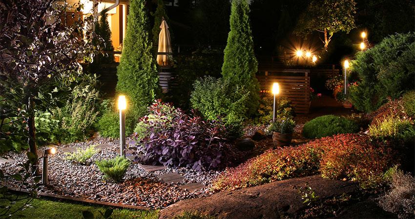 garden lit up at night